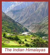 The Indian Himalayas Group Tour