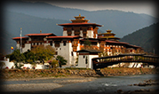 9 Day 