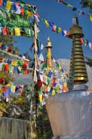 McLeod Ganj Prayer Flags