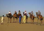 Group Tour Camel ride in Rajasthan