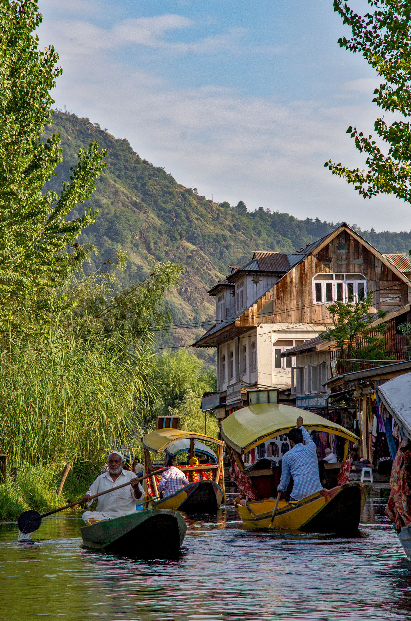 Dal Lake Life, Srinagar