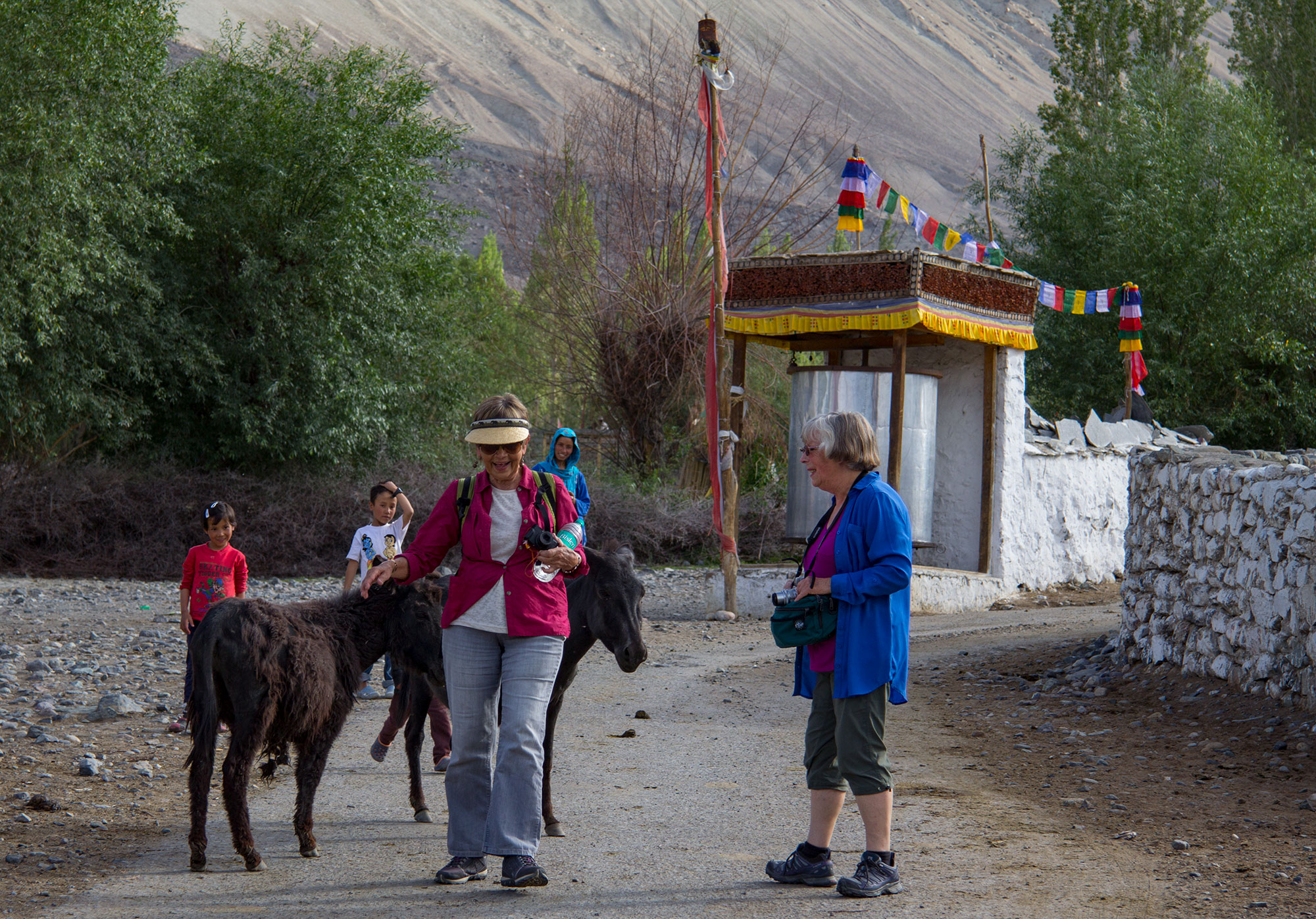 Wandering through Diskit, Nubra Valley